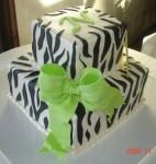 Zebra squares