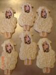 Lamb cookies
